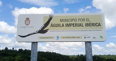 Birdwatching Sierra Morena