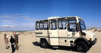 Vogelreise Nationalpark Doñana