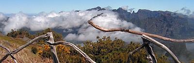 Infobild Madeira