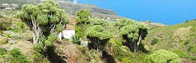 Infobild La Palma